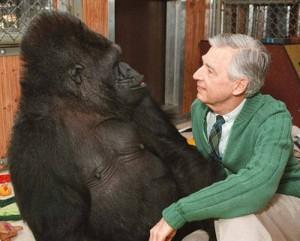 Mr.-Rogers-and-Koko